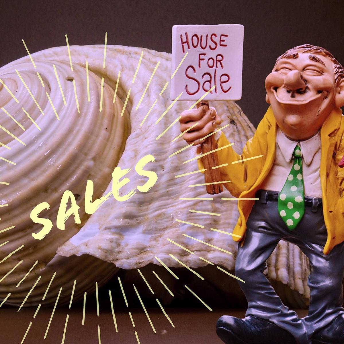 sales strategies business development course