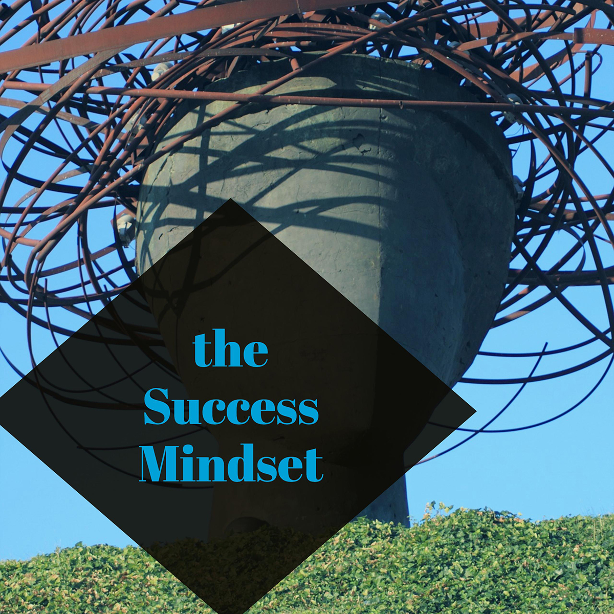 success mindset business development course